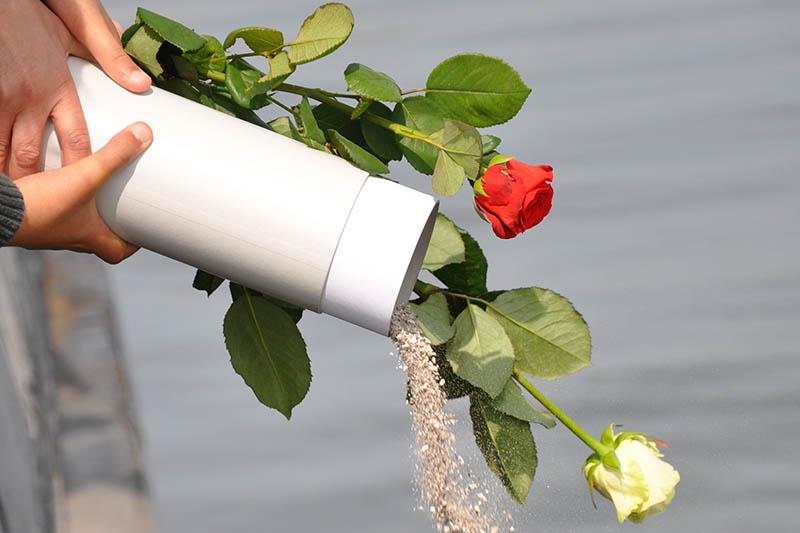 asverstrooiing na crematie